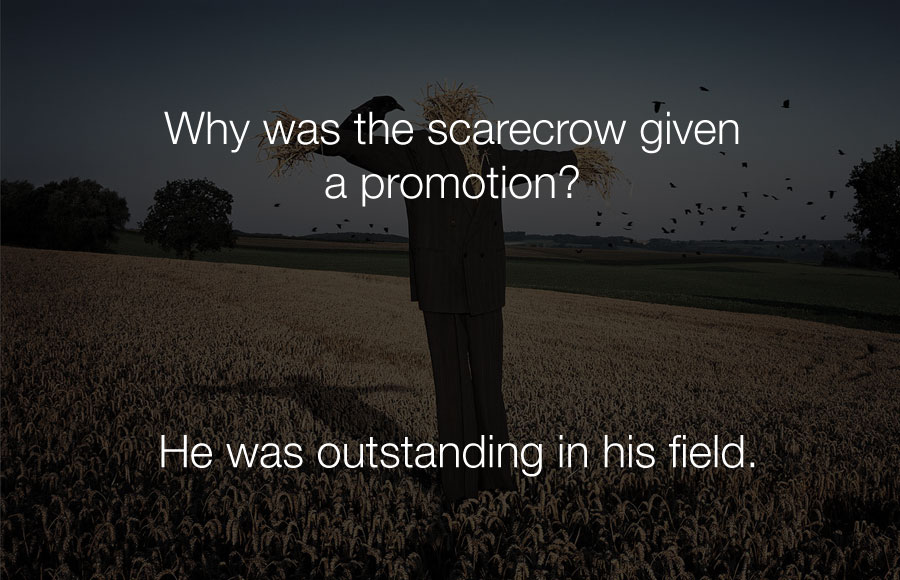 Funniest Jokes - Why was the scarecrow given a promotion.