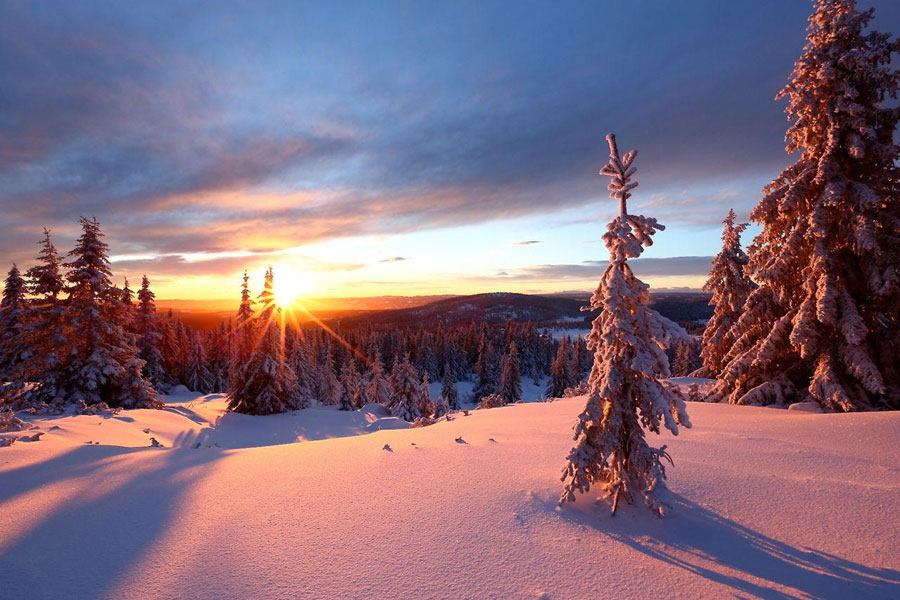 Winter Landscape - Nordseter Lillehammer, Norway