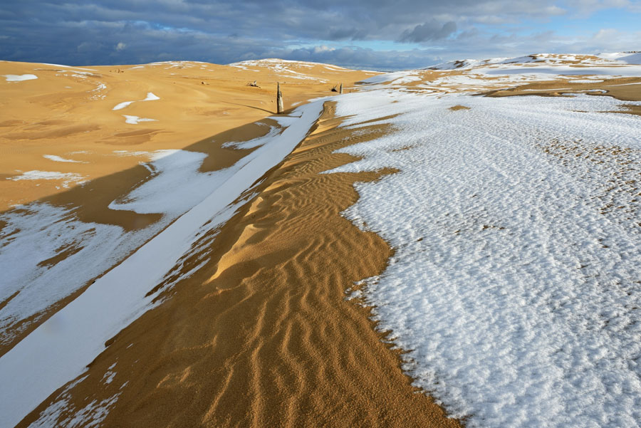 Winter Images - Silver Lake Sand Dunes, Michigan, United States