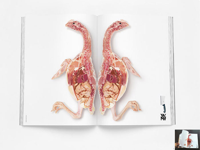 Creative Magazine Ads