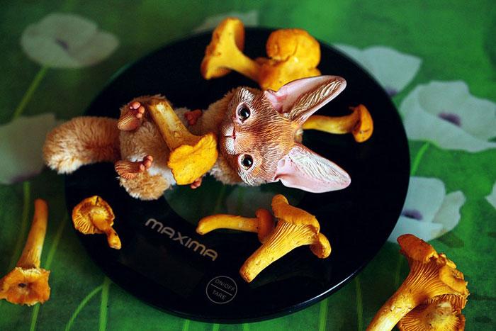 Cute Clay Models - Mushroom Lover