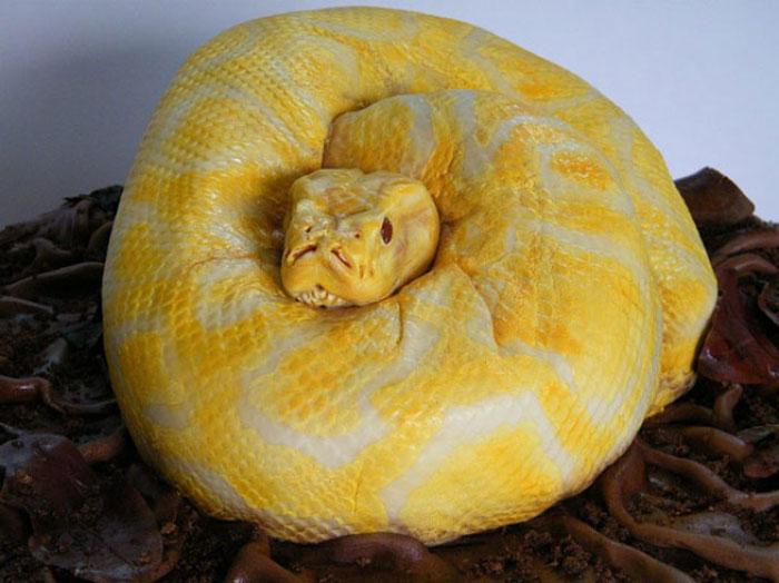 Cake Decorating Ideas - Anaconda Cake