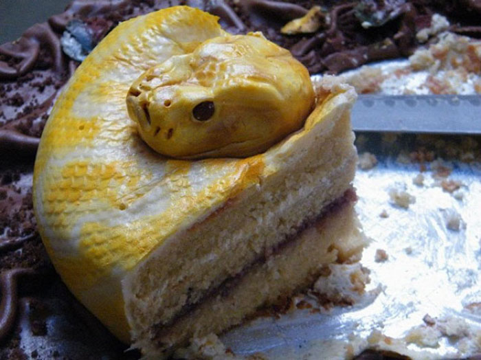 Awesome Cakes - Anaconda Cake