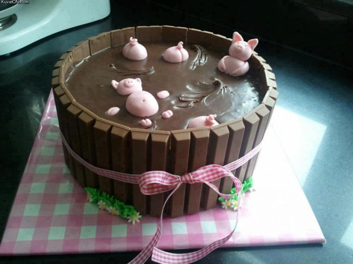 Cake Decorating Ideas - Piggies in The Mud Cake