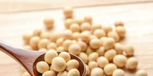 A Complete Guide on How to Properly Choose a Soy Protein Powder