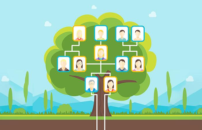 Build a Family Tree