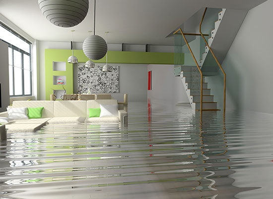 Most Common Causes of Water Damage in the Basement