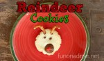 Reindeer Christmas Sugar Cookies- featured