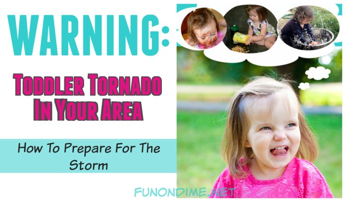 Warning: Toddler Tornado In Your Area! How to Prepare For the Storm