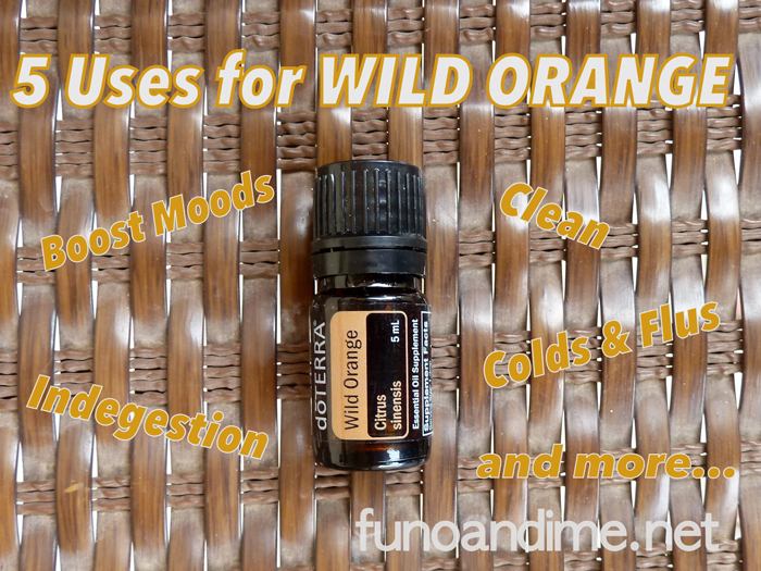 Boost moods, clean and fight colds with Wild Orange essential oil