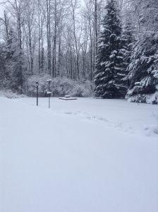 Homesteaders Life - Fun on the Homestead- Winter in Northern Michigan