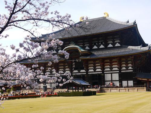 japan_travel_20141210_02