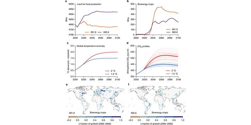 Aquecimento Global: Proteger E Regenerar Florestas é Crucial Para Limitar A Mudança Climática A 1,5°C