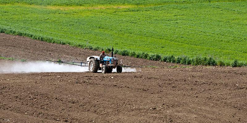 Pesquisa Indica Que Não Há Dose Segura De Agrotóxico