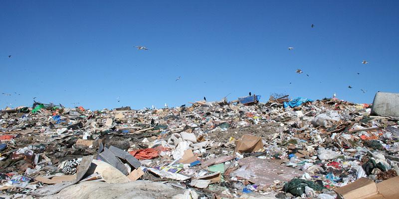 Um Terço Do Lixo Da América Latina E Caribe Acaba Em Aterros Ou Na Natureza