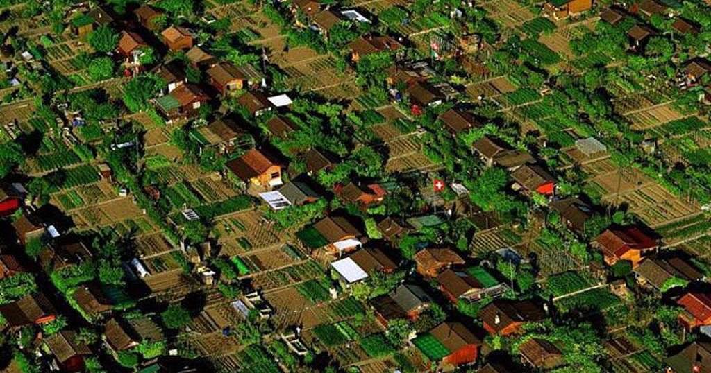 Uma Cidade Onde As Pessoas Plantam Sua Própria Comida
