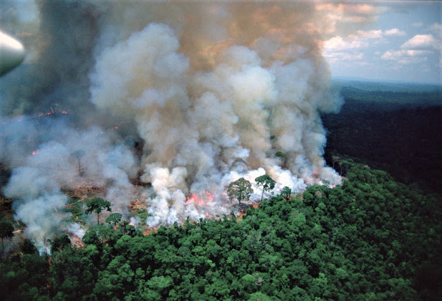 Gestão Ambiental Está à Deriva No Brasil