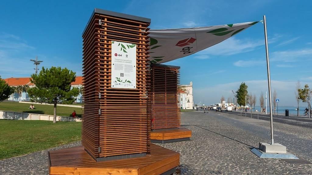 """Lisboa Já Tem """"árvores Urbanas"""" Para Purificar O Ar"""