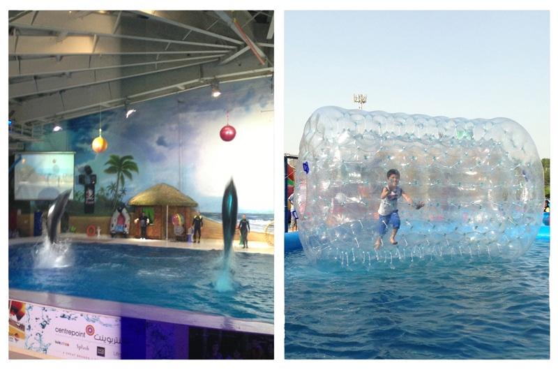 dubai-dolphinarium-activities-to-do-with-kids-in-dubai-uae