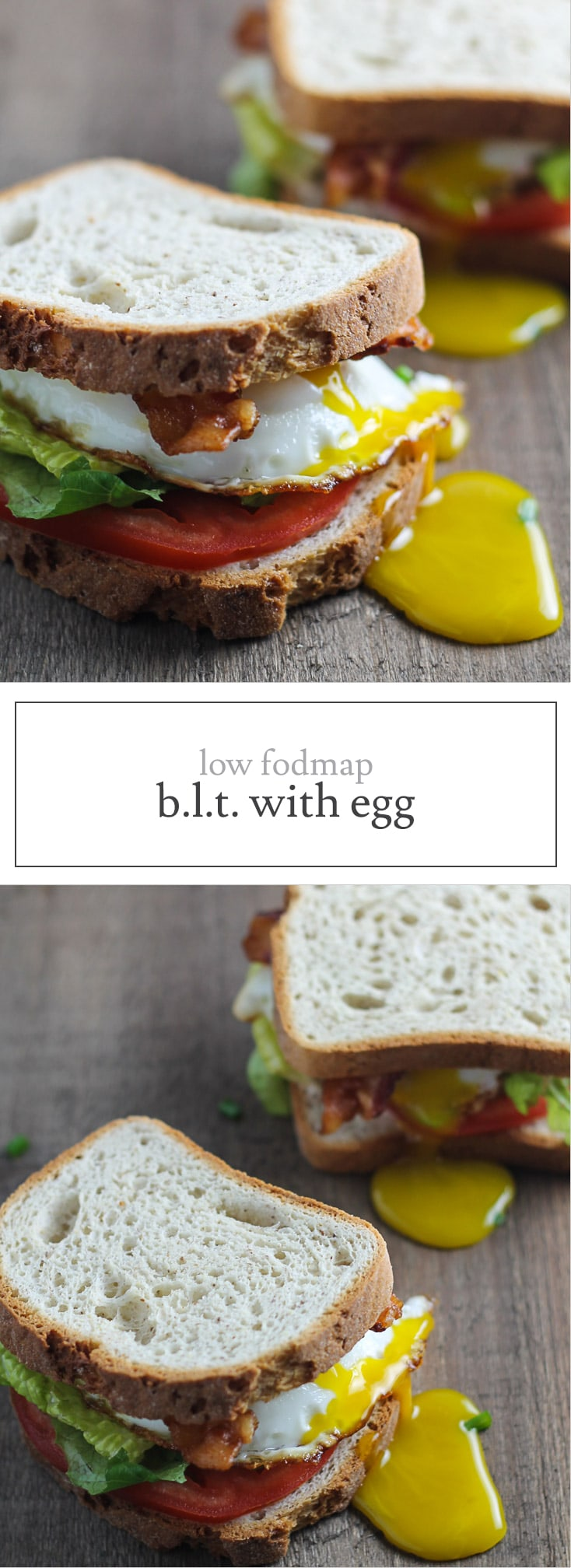 Need a quick and easy meal? This Low FODMAP BLT with Egg is your ticket! Delicious and gluten-free, this sandwich recipe is one of my go-to's: breakfast, lunch or dinner!