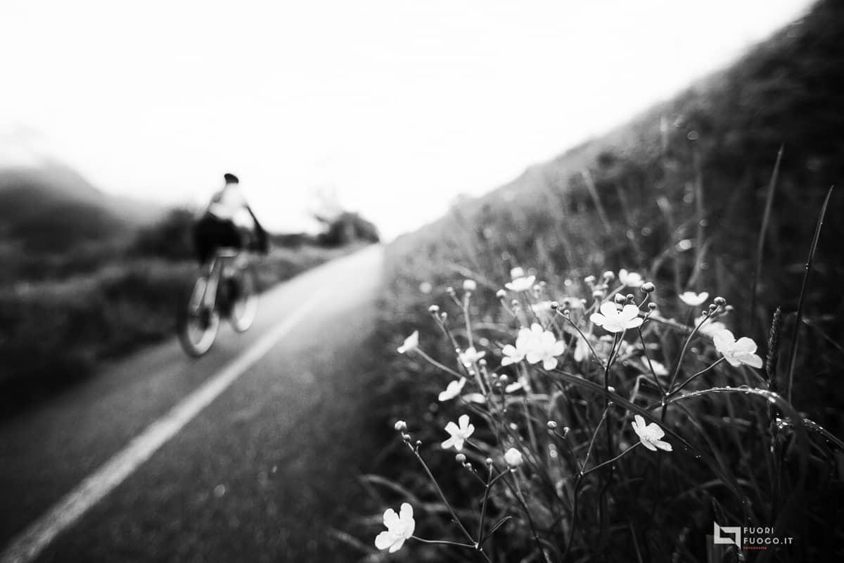 La-strada-della-vita-6