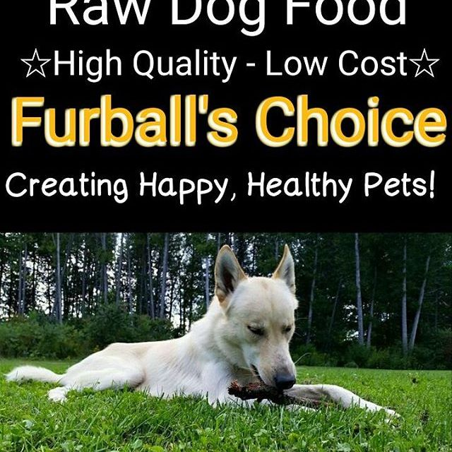 Dog amp Cat food the way mother nature intended Completehellip