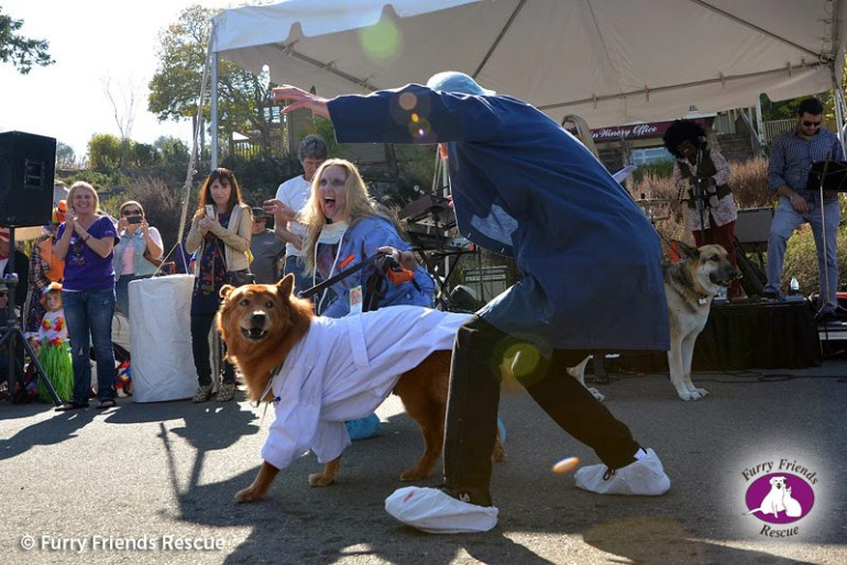 woofstock2013-dog-costume2