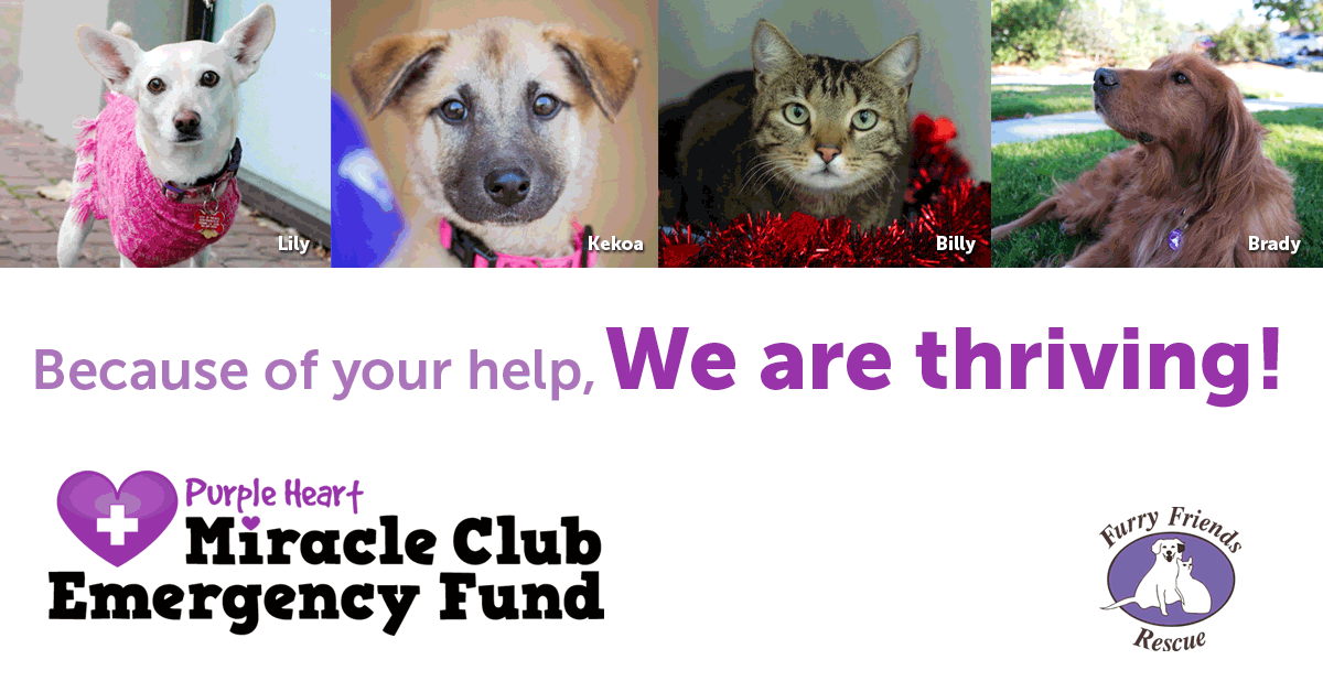 Because of your help, we are thriving! Emergency Fund, Miracle Club