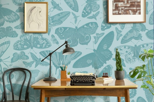 butterfly wallpaper mural in grey