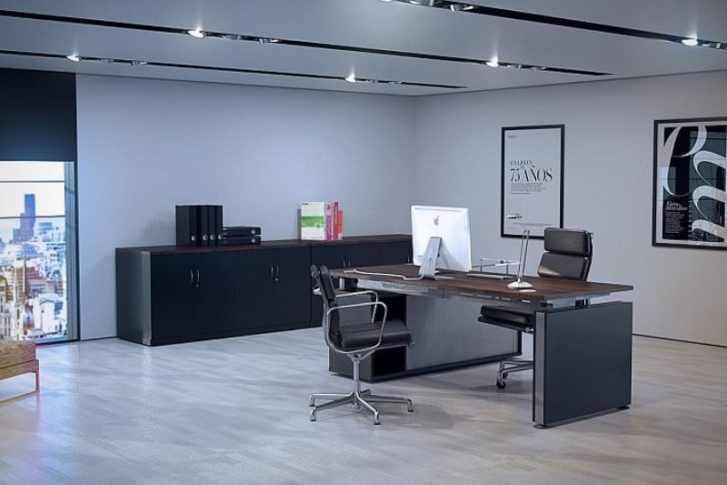 Best Executive Office Design