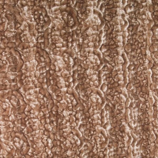 Bronze Beauty Full Fulton Cover