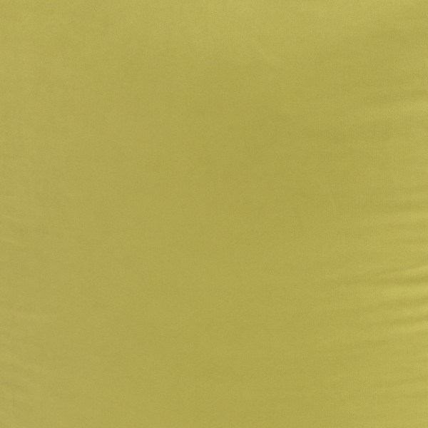 Crayola Inchworm Full Fulton Cover