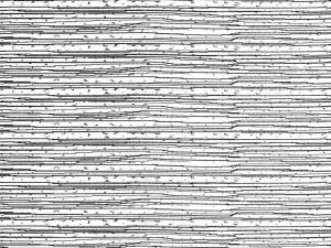 Wavelength 22'' Bolster Pillow Set