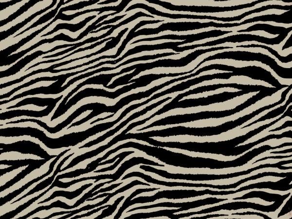 Zebra Zen Full Fulton Cover