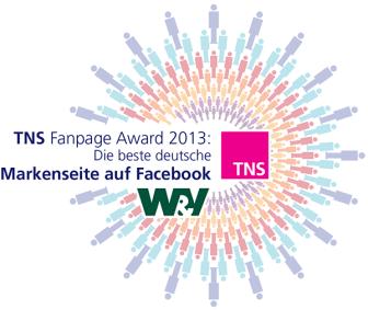 tns-fanpage-award-2013