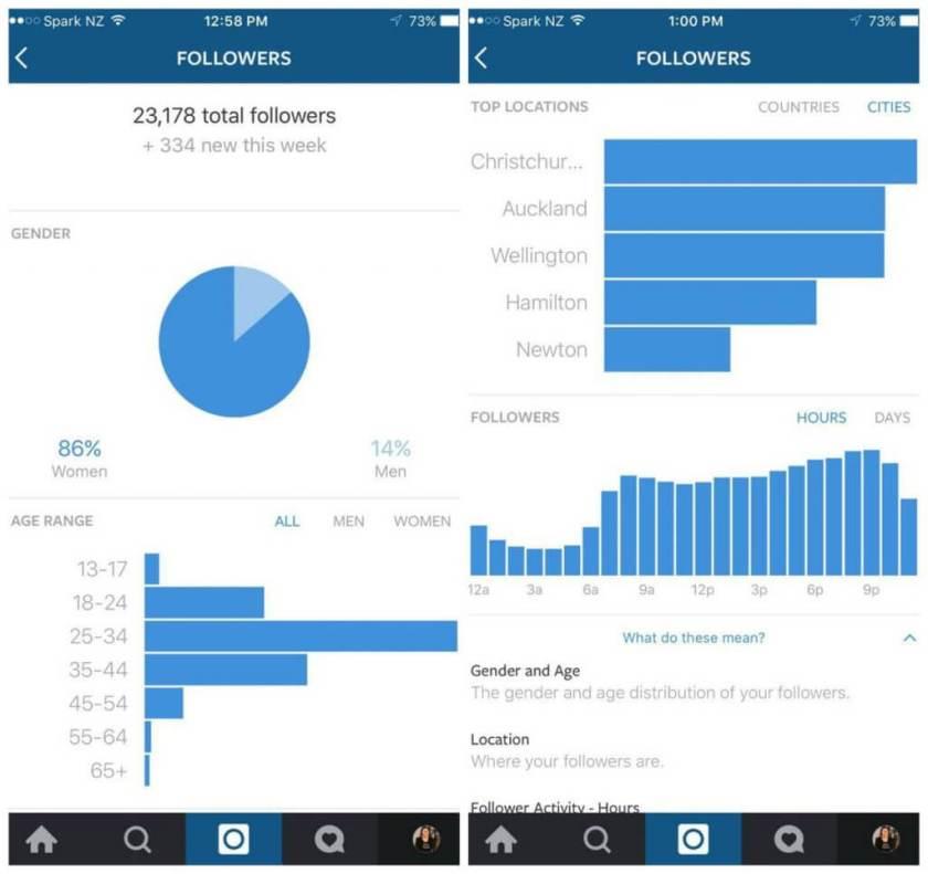 Instagram Statistiken für Unternehmen im Test
