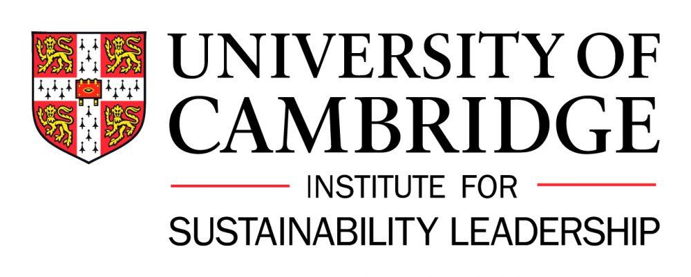 Financing sustainable energy infrastructure – CISL online survey