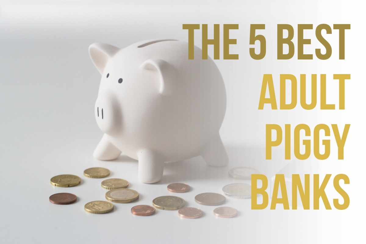 Piggy Bank For Adults