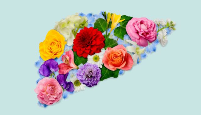 blooming flowers in the shape of a liver