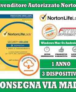 Norton Antivirus 3 computer
