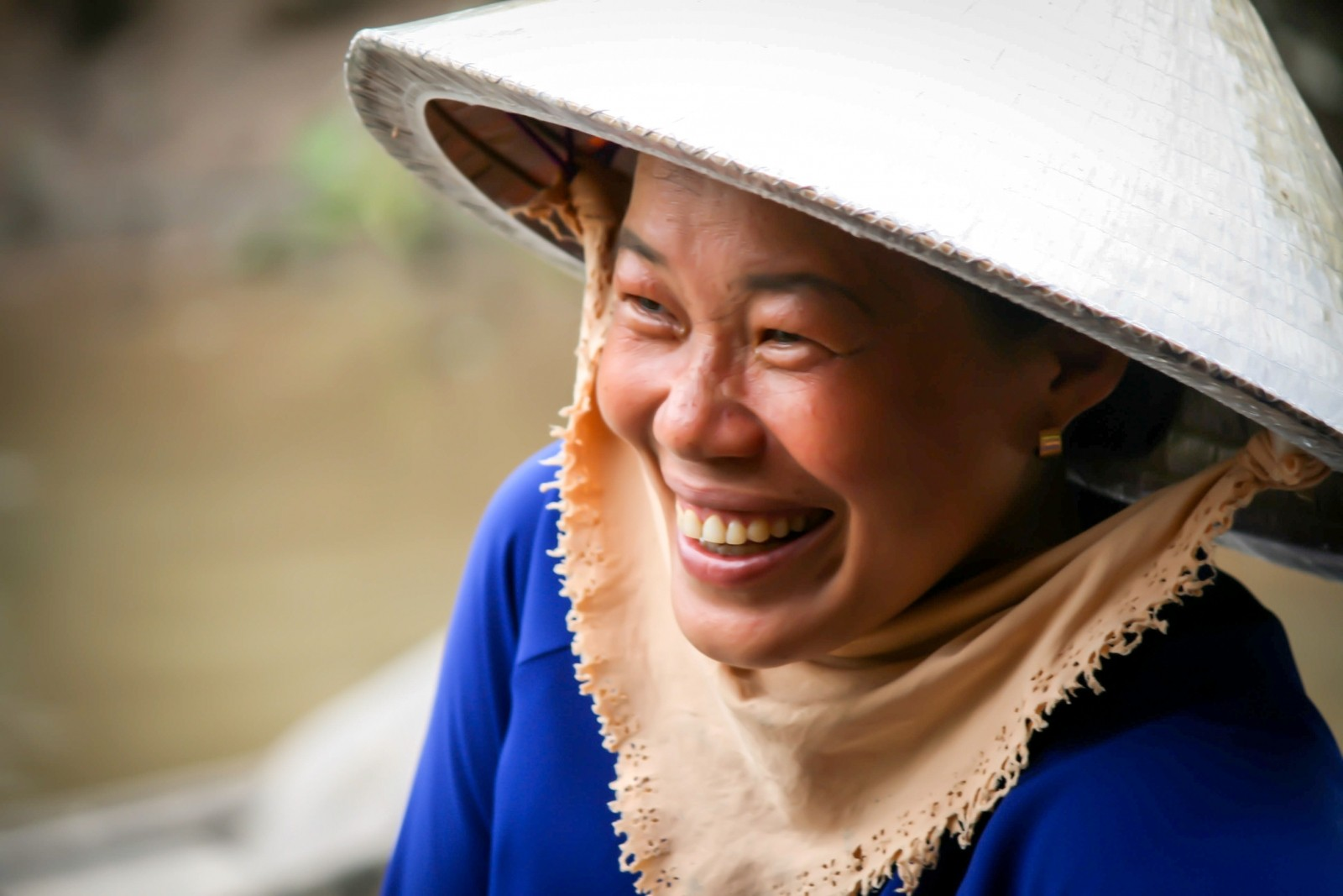 About Friends of Vietnam Heritage
