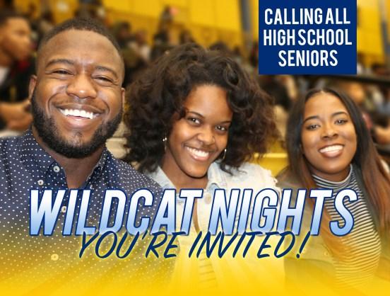 Wildcat Nights Image