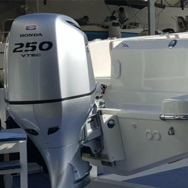 Outboard Power Lift 5
