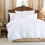 Downright Nirvana Comforters Oversized King Comforter 40oz Fill Wt