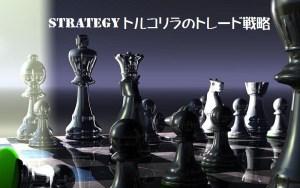カテゴリートルコリラのトレード戦略