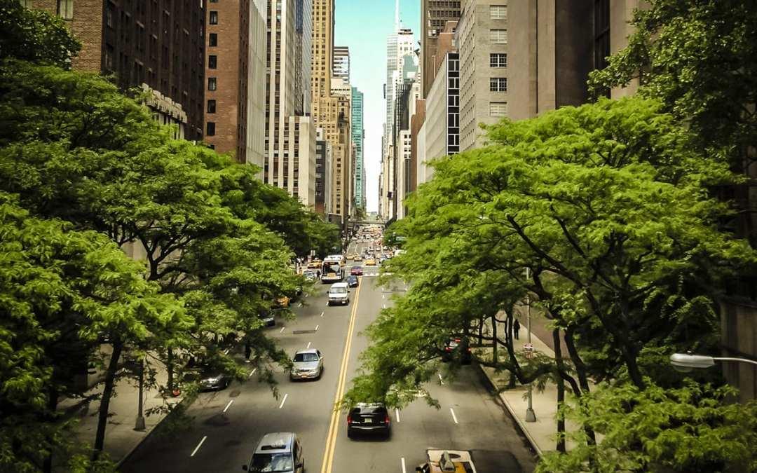 Fybr Green City