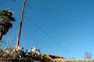 Backup antenna