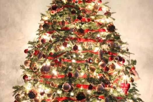 Christmas tree from fynesdesigns.com