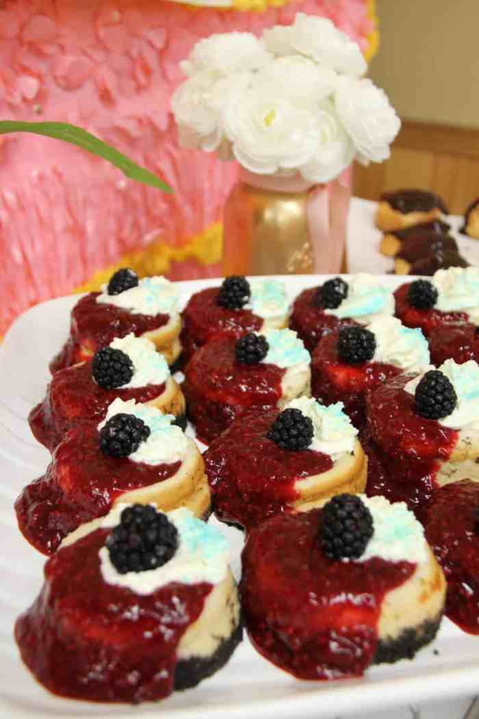 vanilla bean cheesecake with raspberry sauce