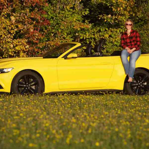 Ford Mustang 50 year edition